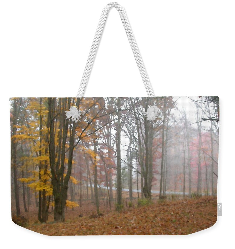 Autumn Weekender Tote Bag featuring the painting Autumnal Mist by Paul Sachtleben