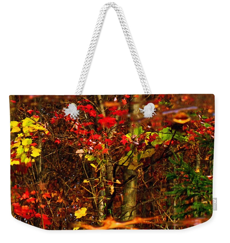 Tree Weekender Tote Bag featuring the photograph Autumns Looking Glass 2 by September Stone