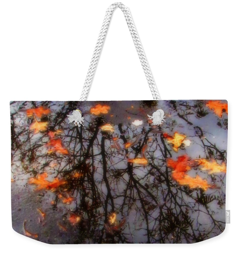 Tree Weekender Tote Bag featuring the photograph Autumns Looking Glass 3 by September Stone