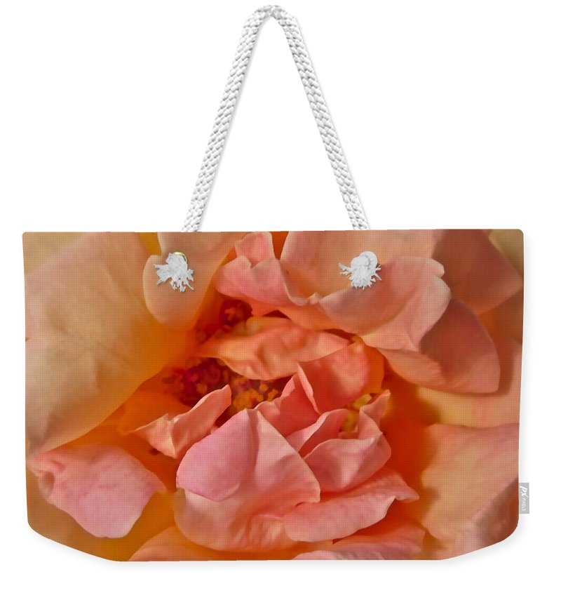 Rose Weekender Tote Bag featuring the photograph Autumns Rose by Gwyn Newcombe