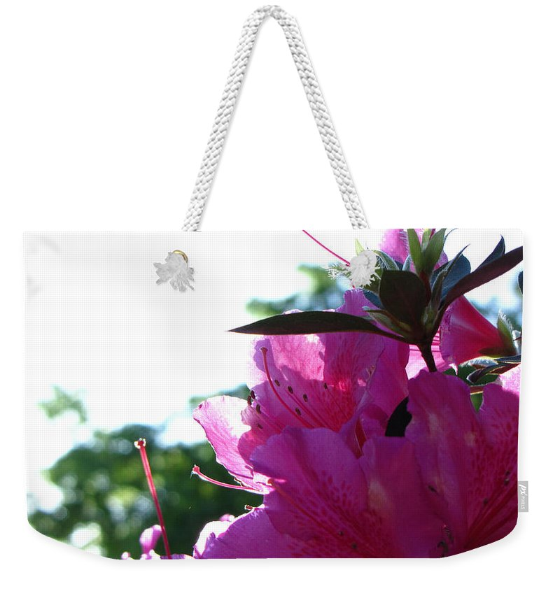 Flower Weekender Tote Bag featuring the photograph Azaleas by Sarah Houser