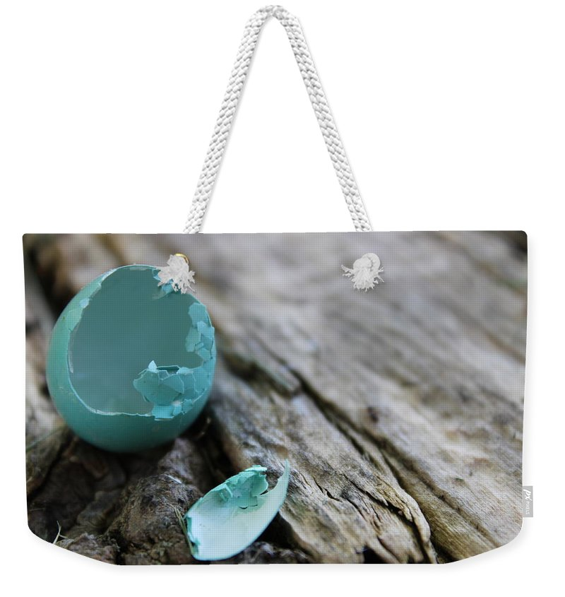 Robin Weekender Tote Bag featuring the photograph Baby Blue 3 by Alexis Ketner