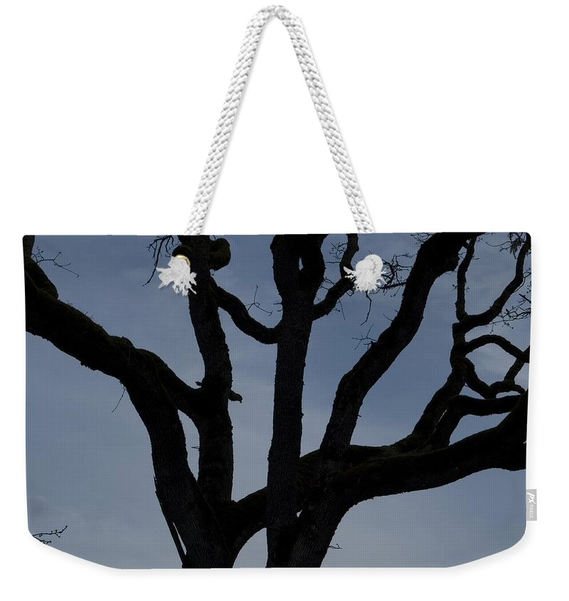 Tree Weekender Tote Bag featuring the photograph Back Of My Hand by Sara Stevenson