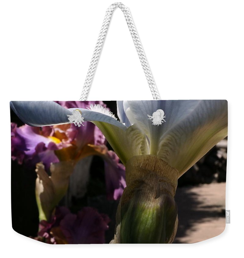 Landscape Weekender Tote Bag featuring the photograph Backyard 4 by Richard Thomas