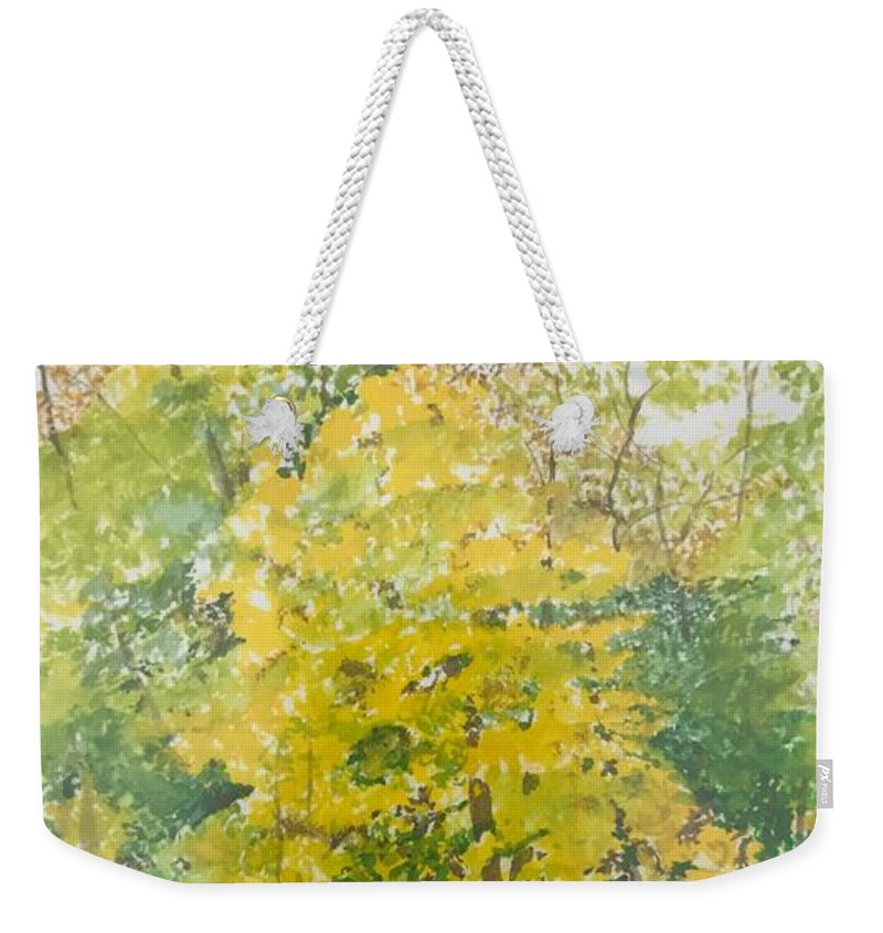 Autumn Weekender Tote Bag featuring the painting Backyard by Leah Tomaino
