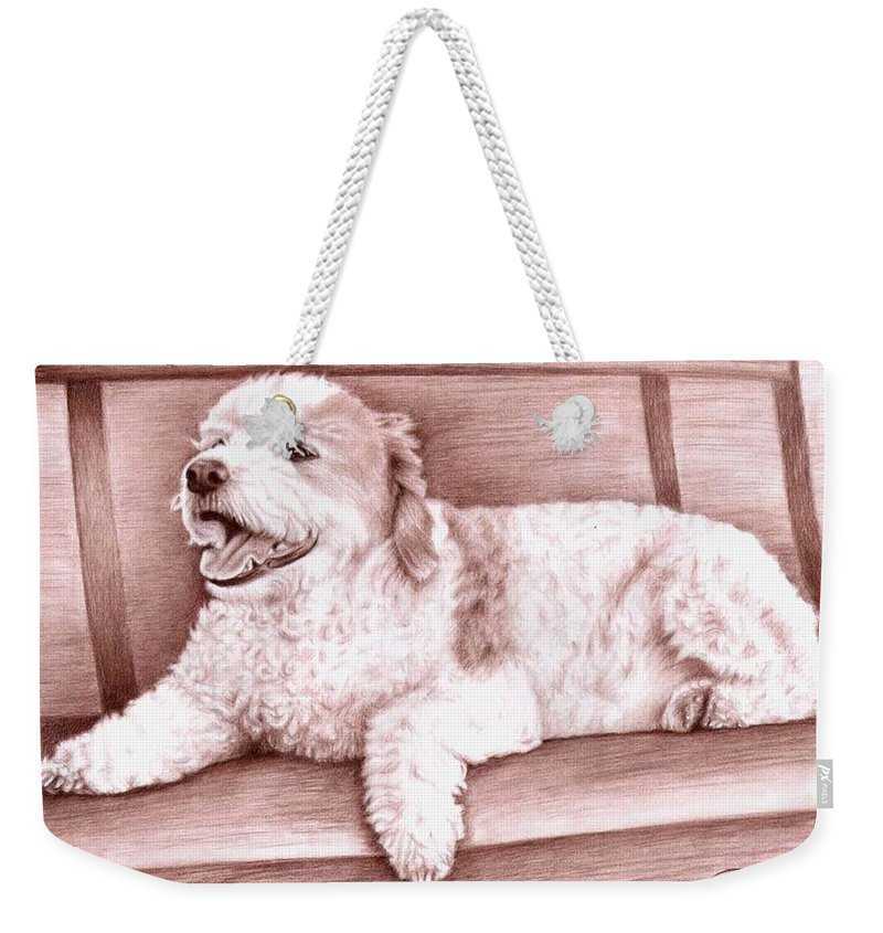 Dog Weekender Tote Bag featuring the drawing Baco by Nicole Zeug