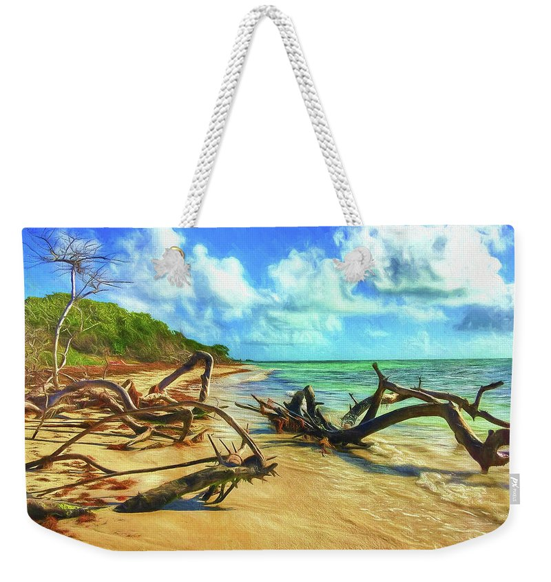 Beach Weekender Tote Bag featuring the photograph Bahia Honda State Park by Jane Fiala