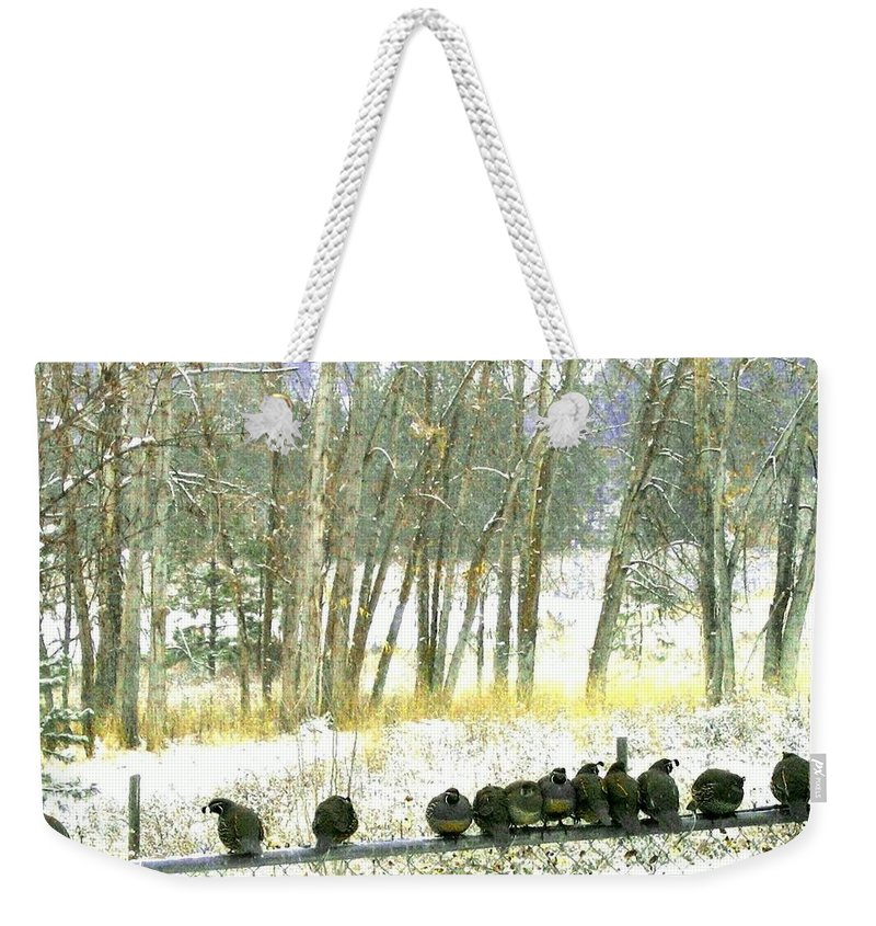 Thirteen Quail Weekender Tote Bag featuring the photograph Bakers Dozen by Will Borden