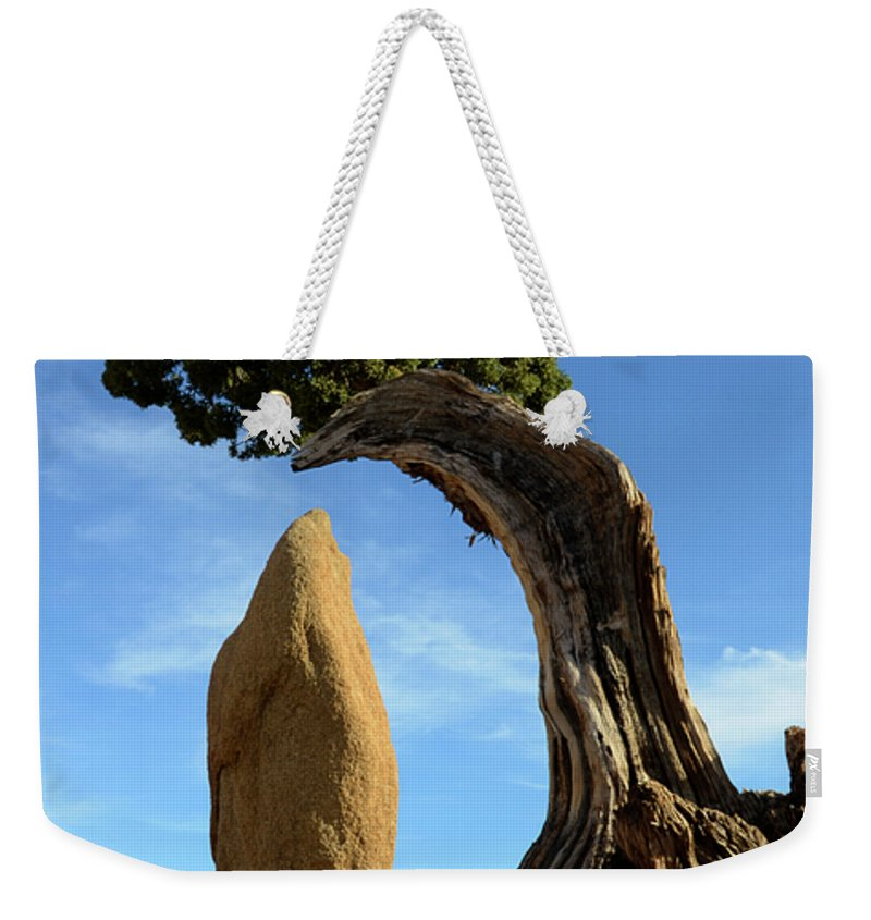 Joshua Tree National Park Weekender Tote Bag featuring the photograph Balancing Act by Bob Christopher