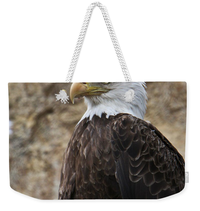 Bald Weekender Tote Bag featuring the photograph Bald Eagle - Portrait 2 by Douglas Barnett