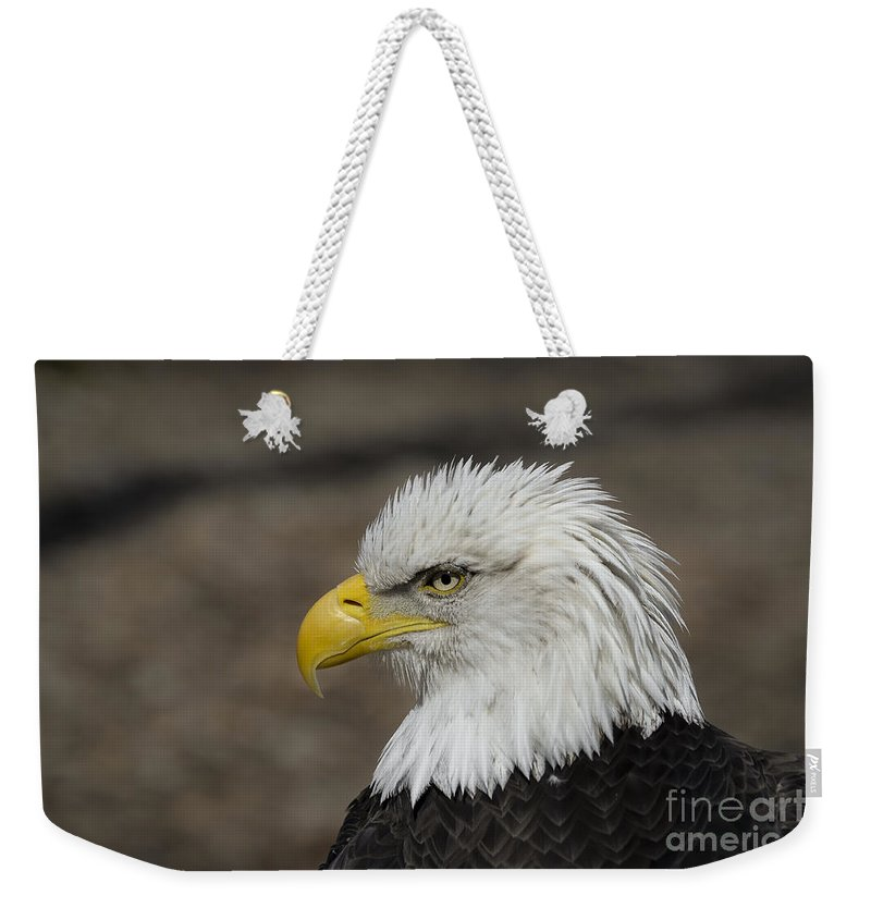 Eagle Weekender Tote Bag featuring the photograph Bald Eagle by Andrea Silies