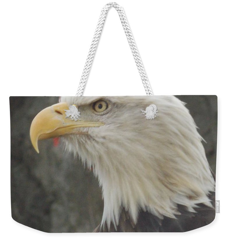 Bald Eagle Weekender Tote Bag featuring the photograph Bald Eagle by Catherine Gagne