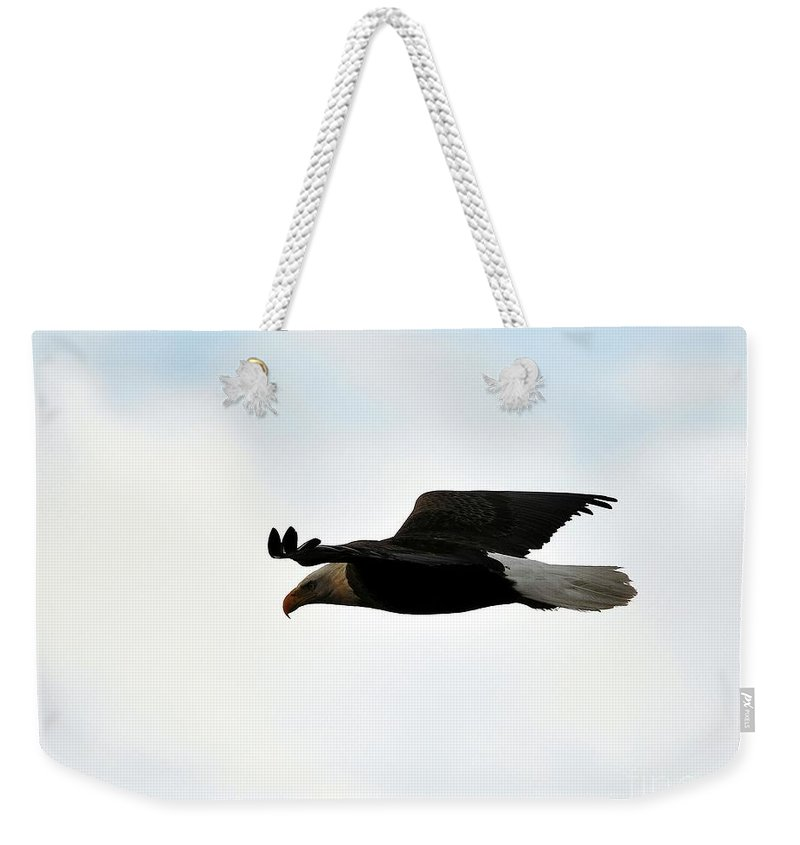 Bald Eagle Weekender Tote Bag featuring the photograph Bald Eagle Flight by Al Powell Photography USA