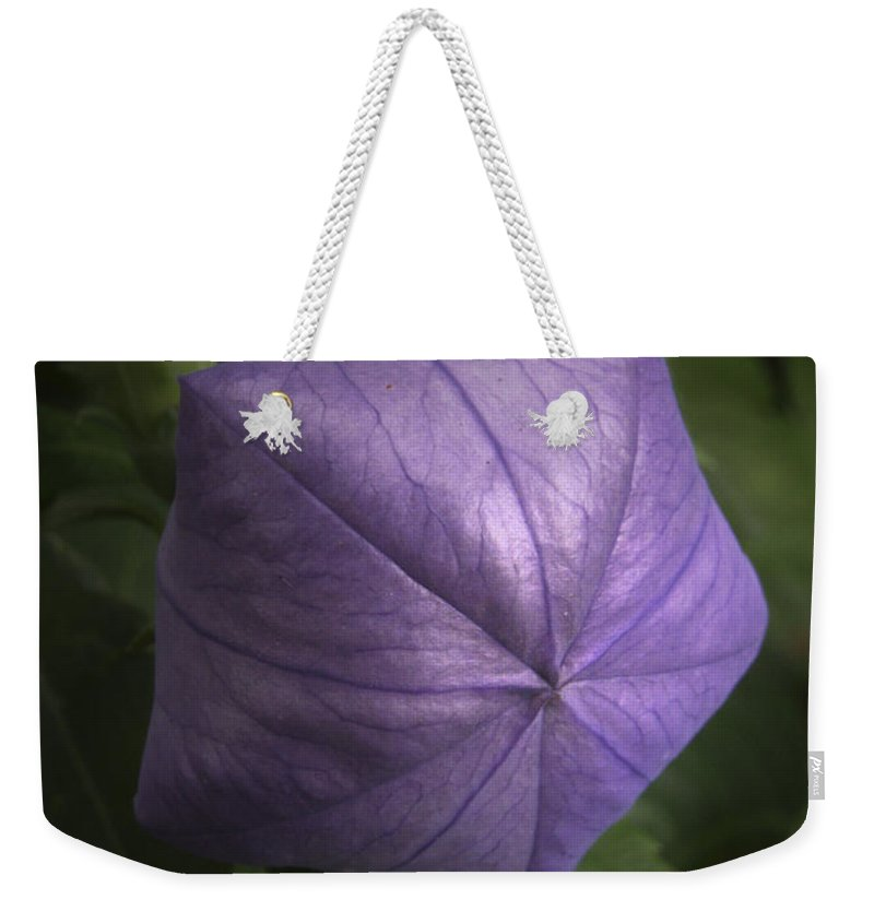 Balloon Flower Weekender Tote Bag featuring the photograph Balloon Flower by Nancy Griswold