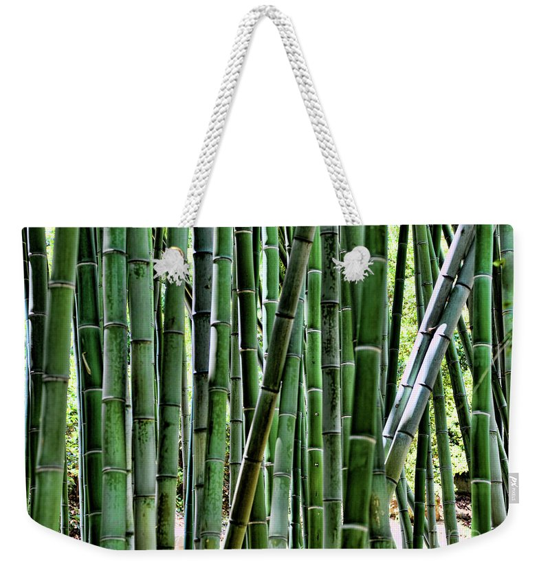 Cactus Weekender Tote Bag featuring the photograph Bamboo by Chuck Kuhn