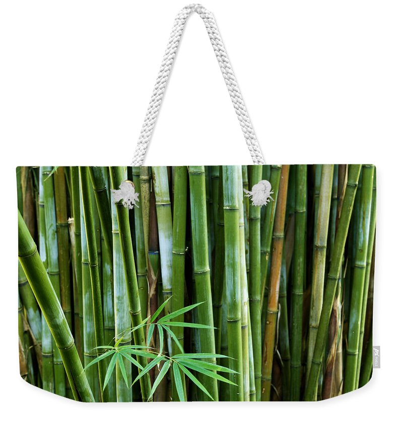Asia Weekender Tote Bag featuring the photograph Bamboo by Les Cunliffe