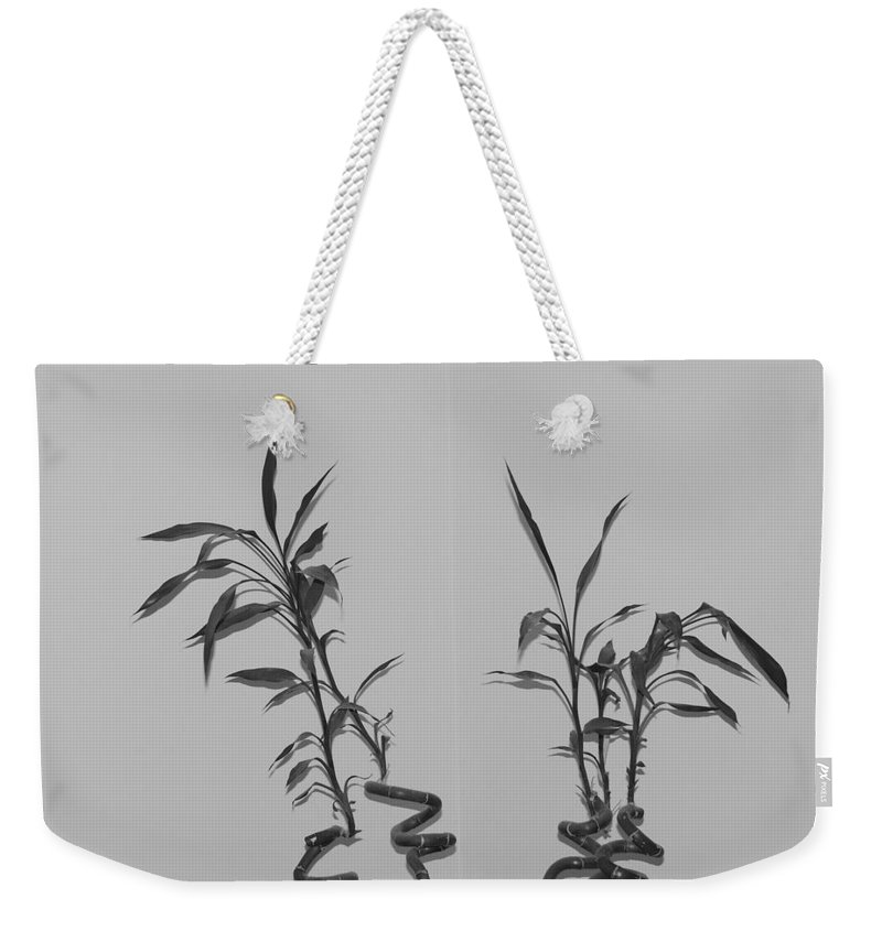 Black And White Weekender Tote Bag featuring the photograph Bamboo Shutes by Rob Hans
