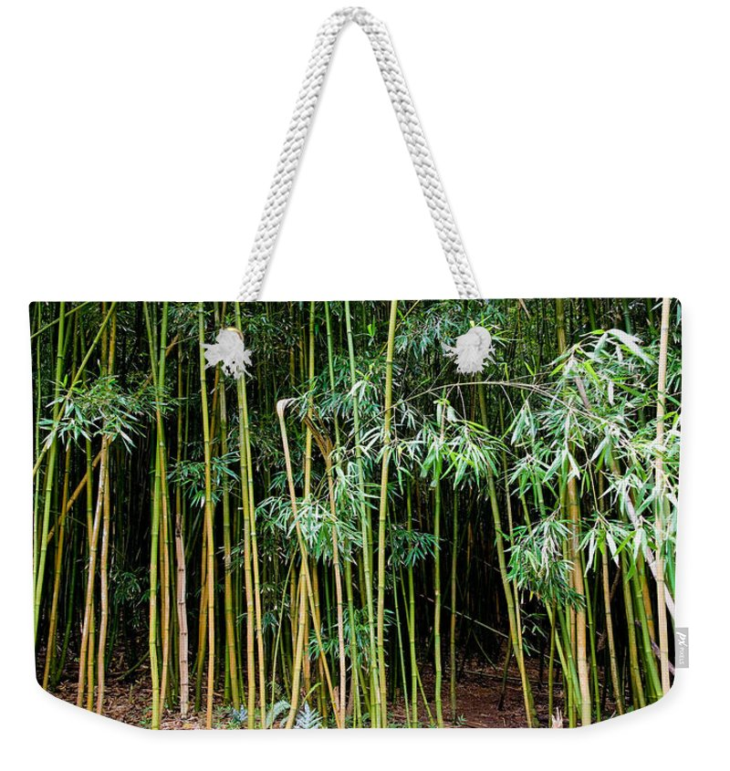 Bamboo Wind Chimes Weekender Tote Bag featuring the photograph Bamboo Wind Chimes Waimoku Falls Trail Hana Maui Hawaii by Michael Bessler