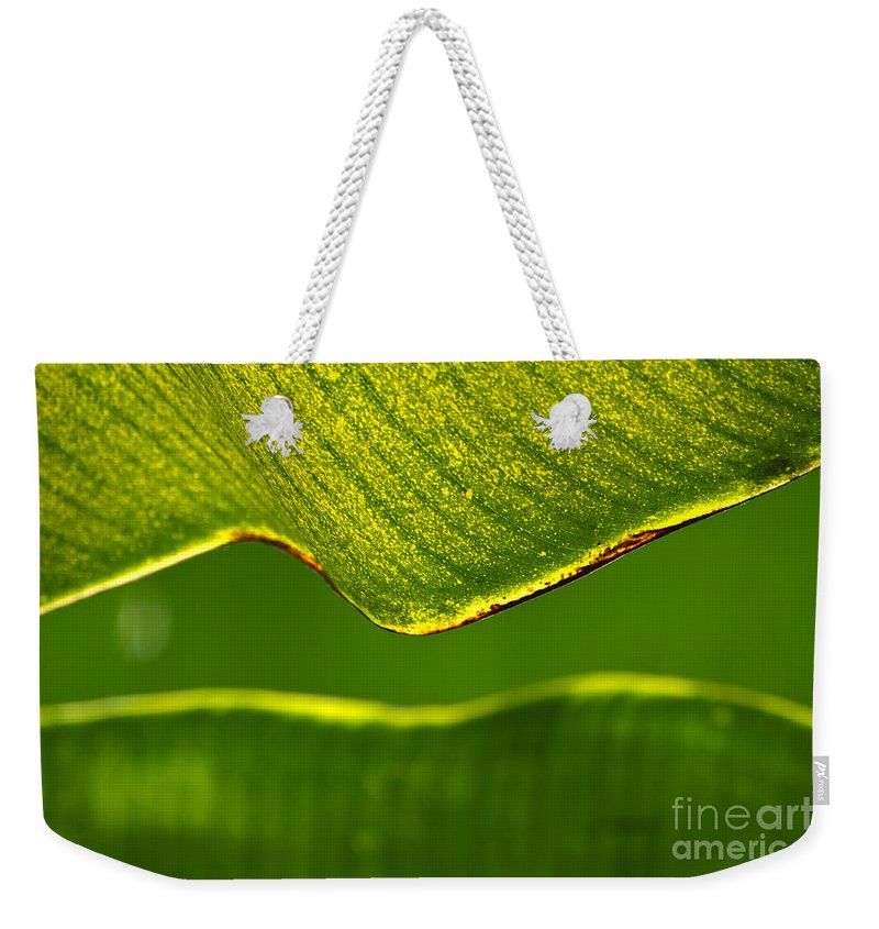 Banana Leaf Weekender Tote Bag featuring the photograph Banana Leaf Lines by Alycia Christine