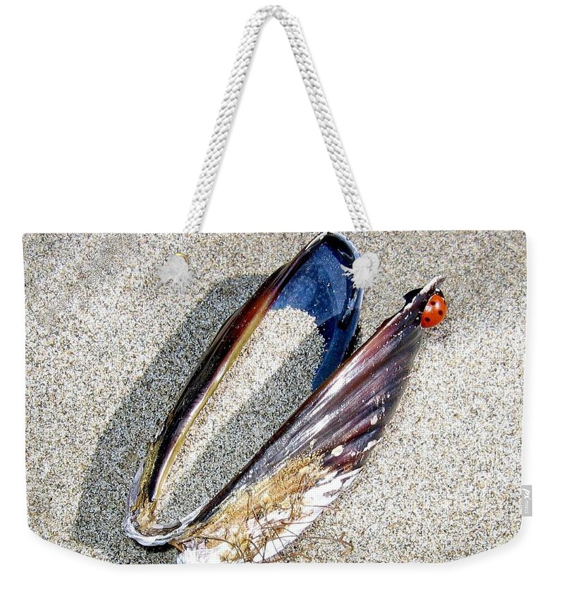 Bandon Weekender Tote Bag featuring the photograph Bandon 13 by Will Borden