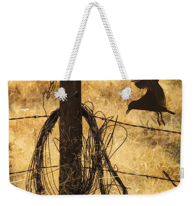 Barbed Landing Weekender Tote Bag featuring the photograph Barbed Landing by Priscilla Burgers