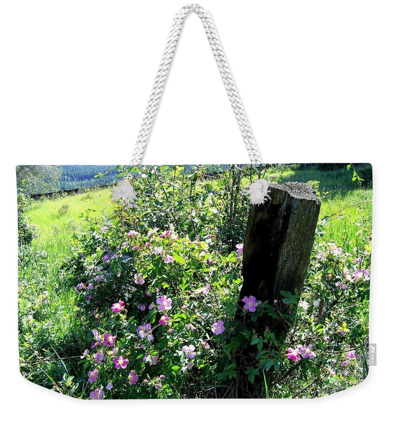 Wild Roses Weekender Tote Bag featuring the photograph Barbed Wire And Roses by Will Borden