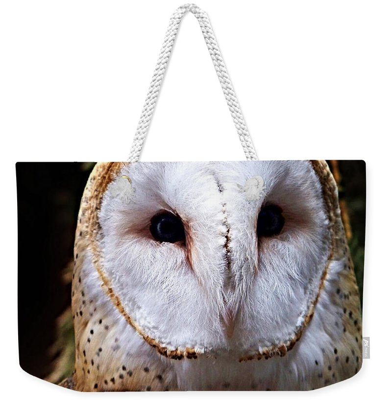 Barn Owl Weekender Tote Bag featuring the photograph Barn Owl by Anthony Jones