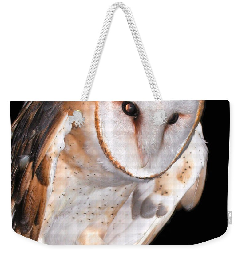 Owl Collection Weekender Tote Bag featuring the photograph Barn Owl by Jean Noren