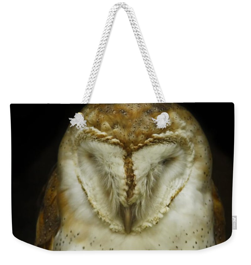 Barn Owl Weekender Tote Bag featuring the photograph Barn Owl by Phill Doherty