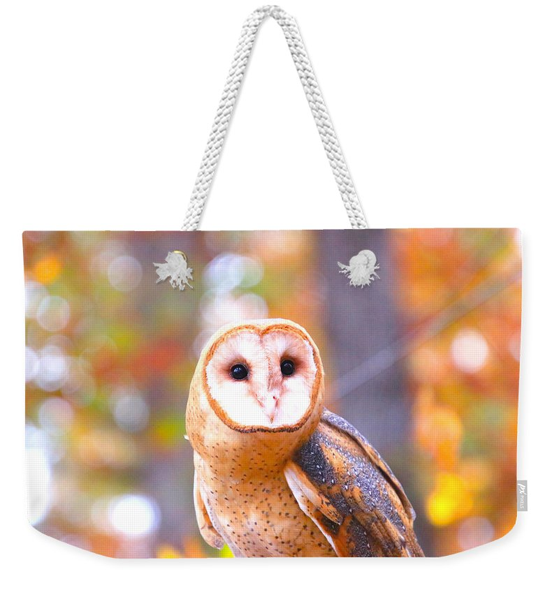 Weekender Tote Bag featuring the photograph Barn Owl by Tony Umana