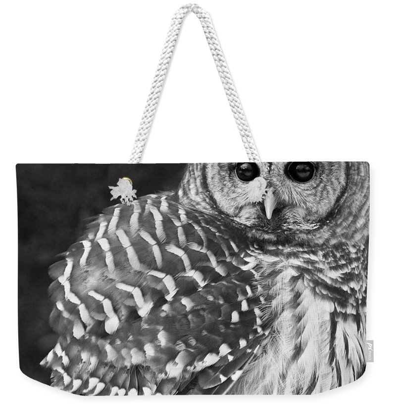 Barred Owl Weekender Tote Bag featuring the photograph Barred Owl Beauty by Emma England