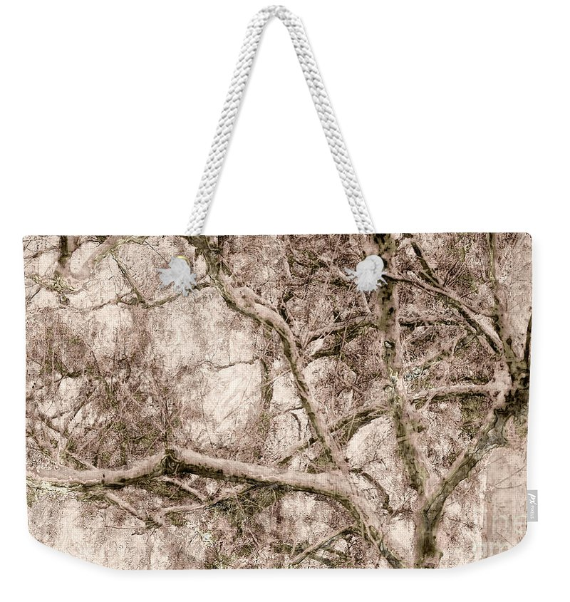 Tree Weekender Tote Bag featuring the digital art Barren Tree by Davy Cheng