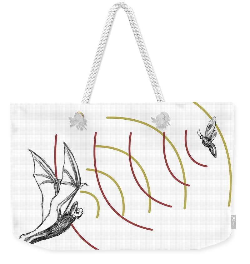 Animal Weekender Tote Bag featuring the photograph Bat Bio Sonar by Spencer Sutton