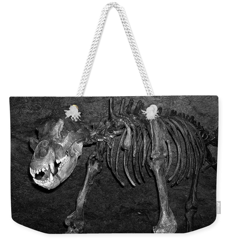 Europe Weekender Tote Bag featuring the photograph Be Nice ... by Juergen Weiss