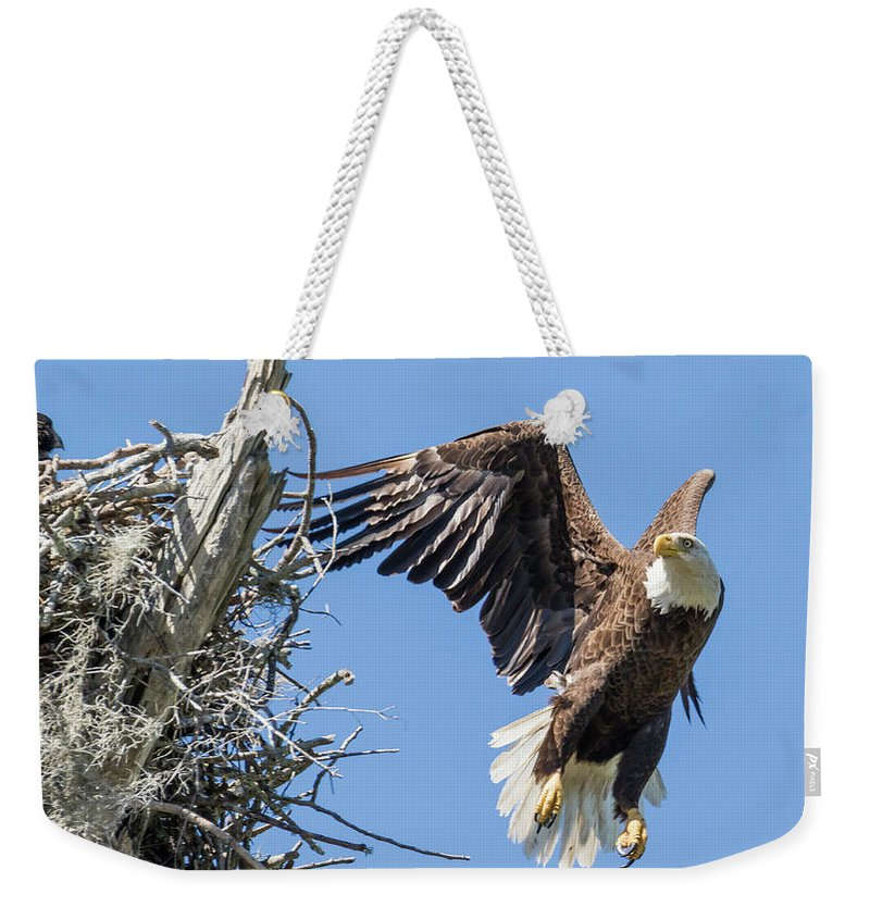 Eagle Weekender Tote Bag featuring the photograph Be Right Back by Tony Fruciano