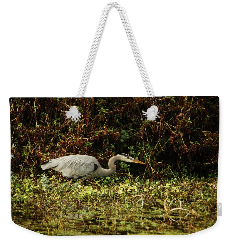 Heron Weekender Tote Bag featuring the photograph Be Wery Wery Quiet by Donna Blackhall