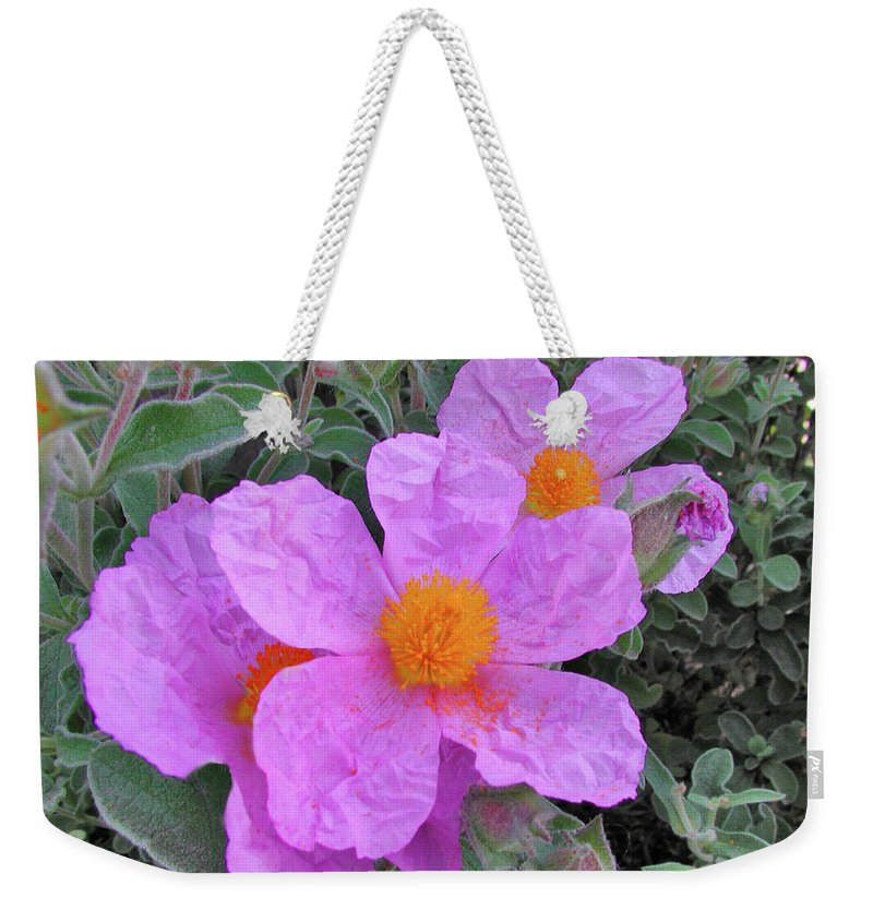 Flowers Weekender Tote Bag featuring the photograph Beach Flower by Arthur Fix