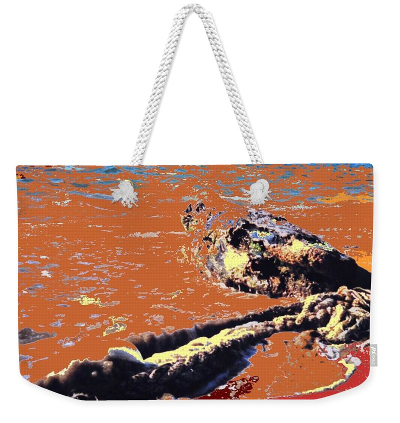 Rope Weekender Tote Bag featuring the photograph Beach Rope by Ian MacDonald