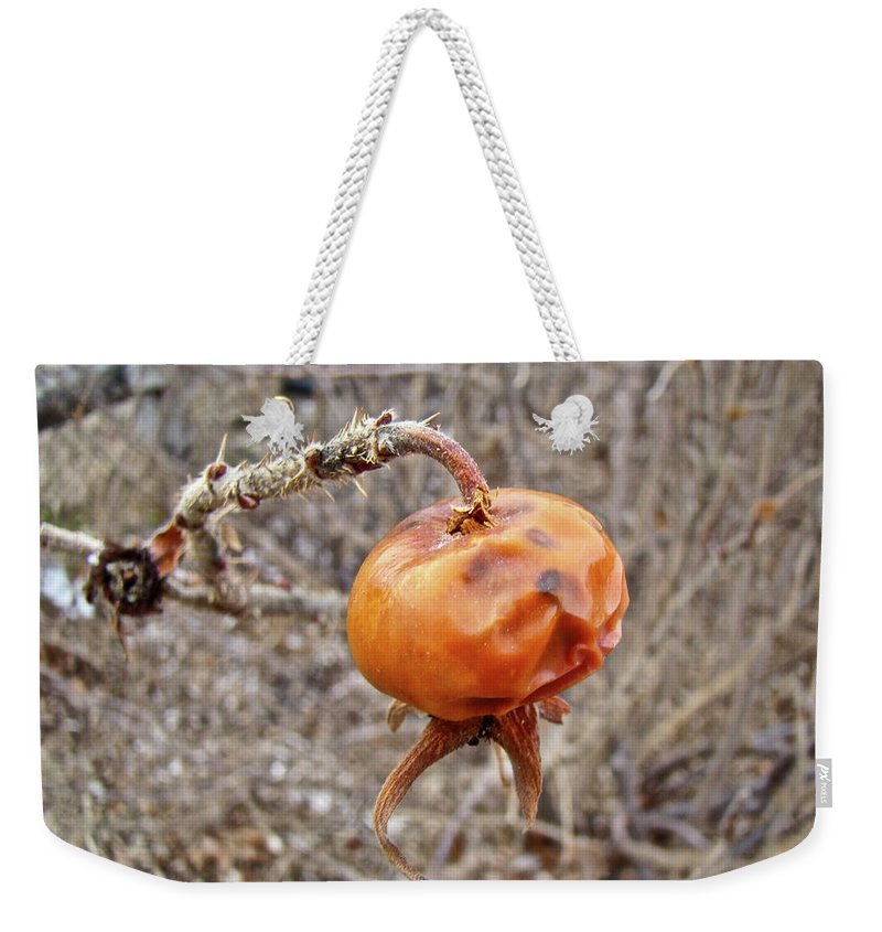 Rose Weekender Tote Bag featuring the photograph Beach Rose Hip - Rosa Rugosa by Mother Nature