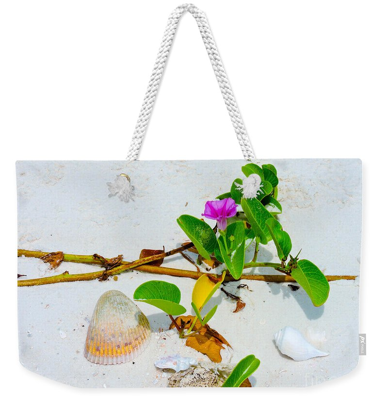 Shoreline Weekender Tote Bag featuring the photograph Beach Treasures by Marilee Noland