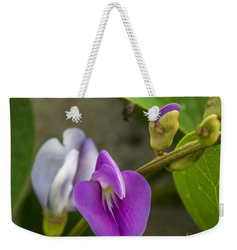 Florida Weekender Tote Bag featuring the photograph Beaked Butterfly Pea 9 by Nancy L Marshall