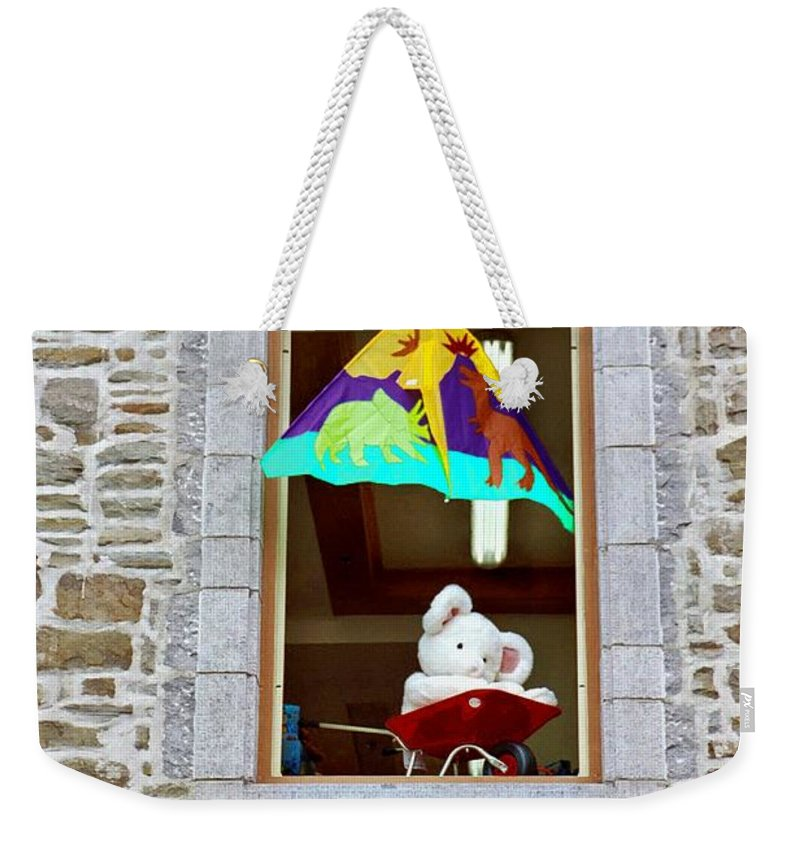 Toys Weekender Tote Bag featuring the photograph Bear Formally Known As Teddy by John Schneider