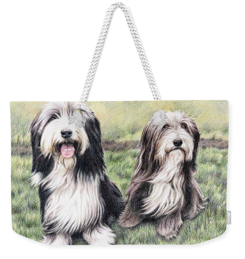 Dogs Weekender Tote Bag featuring the drawing Bearded Collies by Nicole Zeug