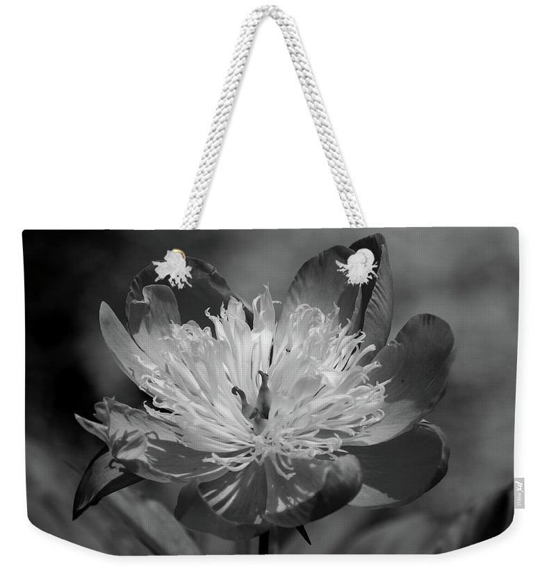 Peony Weekender Tote Bag featuring the photograph Beautiful Anyway by Lori Tambakis