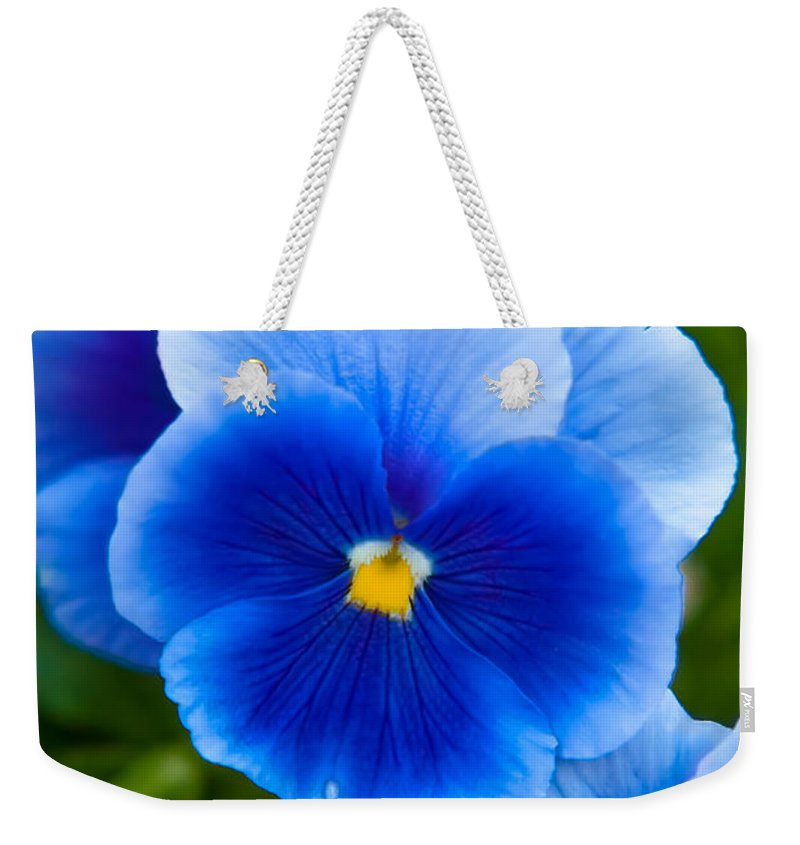 Spring Flowers Weekender Tote Bag featuring the photograph Beautiful Blues by Az Jackson