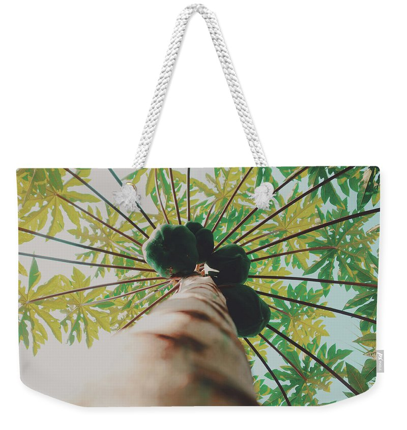 Agriculture Weekender Tote Bag featuring the photograph Beautiful Branches And Leaves Of Papaya Tree Along With The Tasty Exotic Fruit Fill The Frame by Srdjan Kirtic