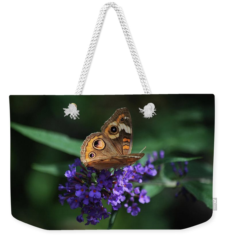 Butterfly Weekender Tote Bag featuring the photograph Beautiful Buckeye by Lori Tambakis