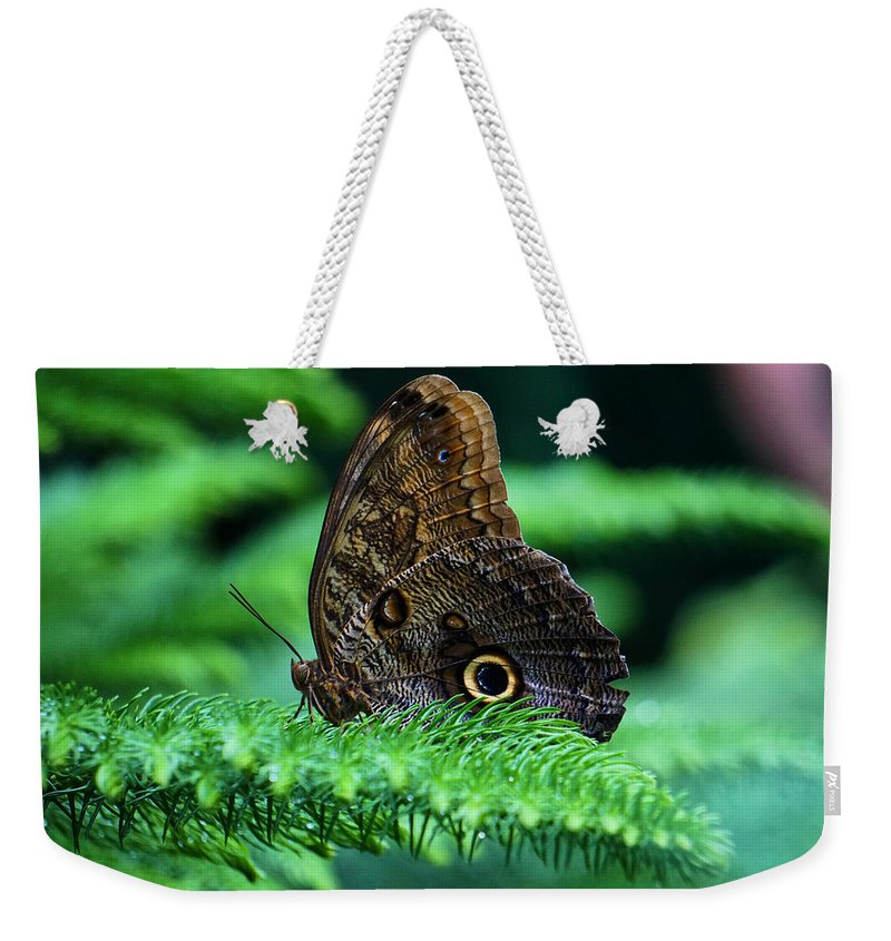 Yellow Weekender Tote Bag featuring the photograph Beautiful Butterfly by Lilia D