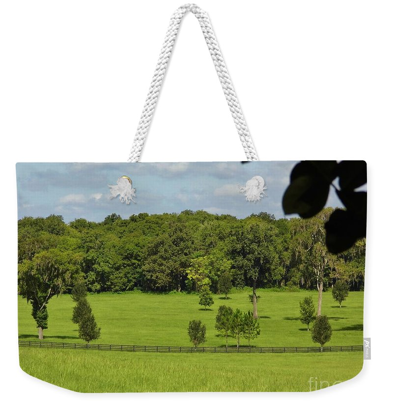 Blue Sky Weekender Tote Bag featuring the photograph Beautiful Day by D Hackett