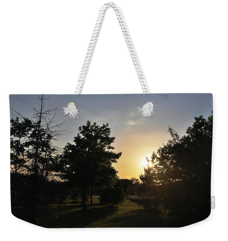 Tree Weekender Tote Bag featuring the photograph Beautiful Greenery Park In The Afternoon by Matt Harang